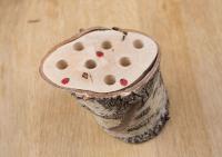 04 Potloodstronkje ladybug 07