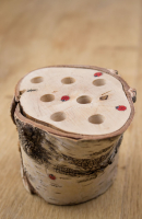 04 Potloodstronkje ladybug 09